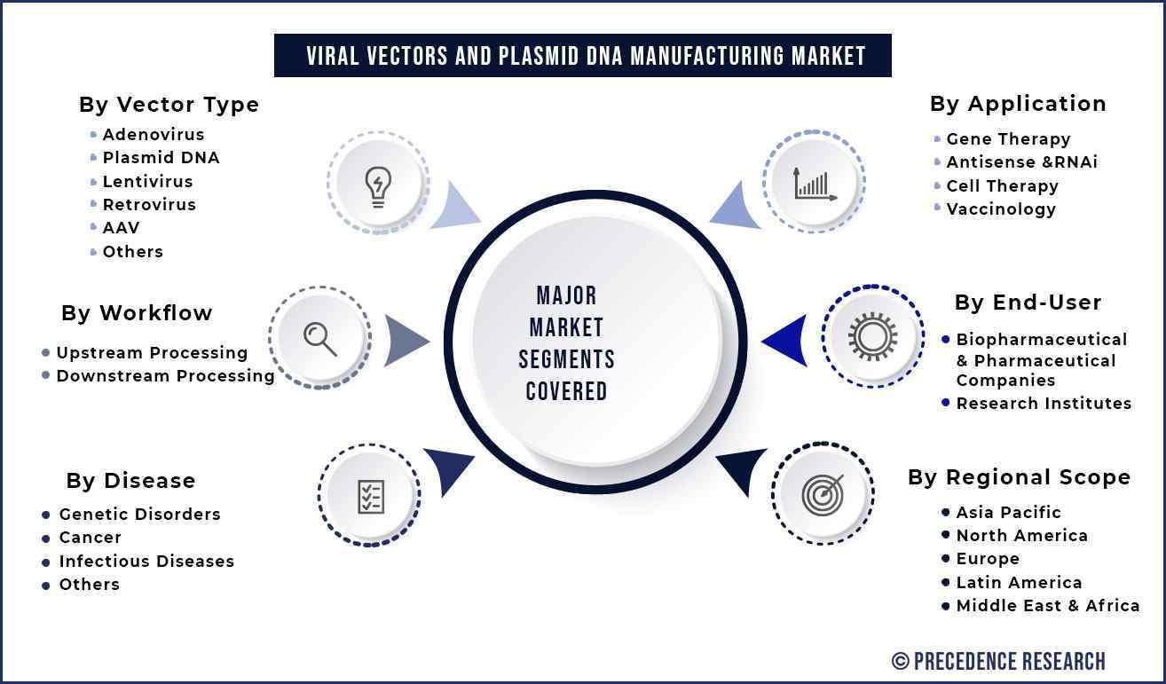Viral Vectors and Plasmid DNA Manufacturing Market Segmentation